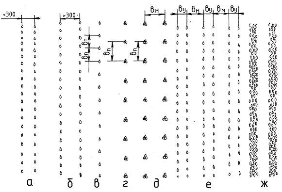 Схема размещения семян на